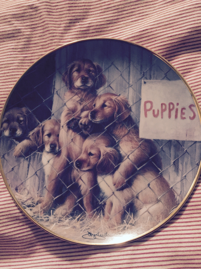 Photo 🐶 FRANKLIN MINT COLLECTOR'S PLATE- PUPPIES🐾