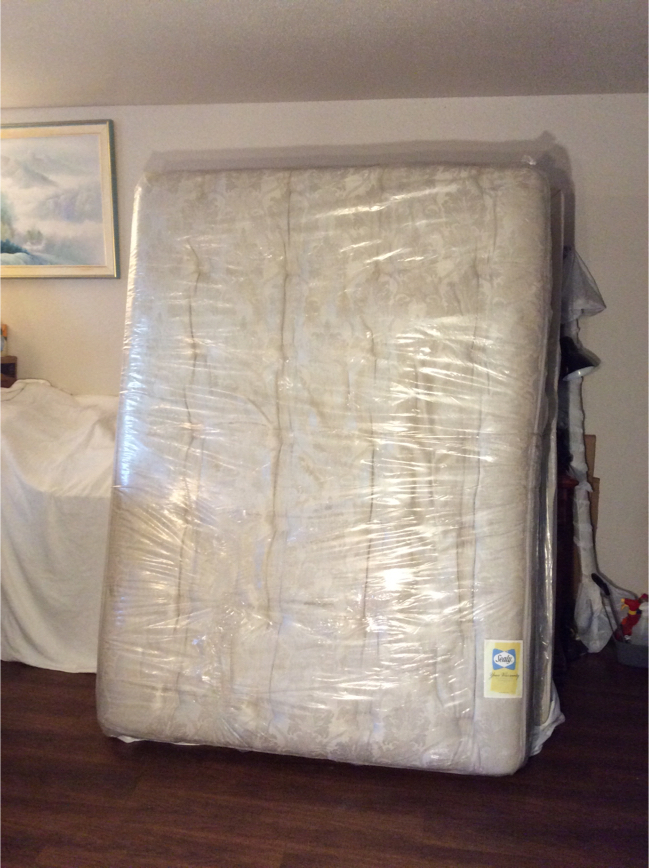 Photo Brand NEW Queen Size Sealy POSTUREPEDIC EXTRAVAGANZE Pillow-top ULTRA PLUSH Mattress and Box Spring
