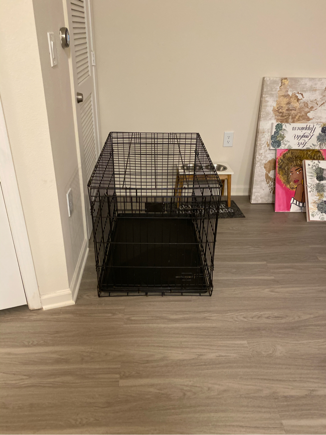"""Photo Large 36"""" Dog Crate must go!!"""