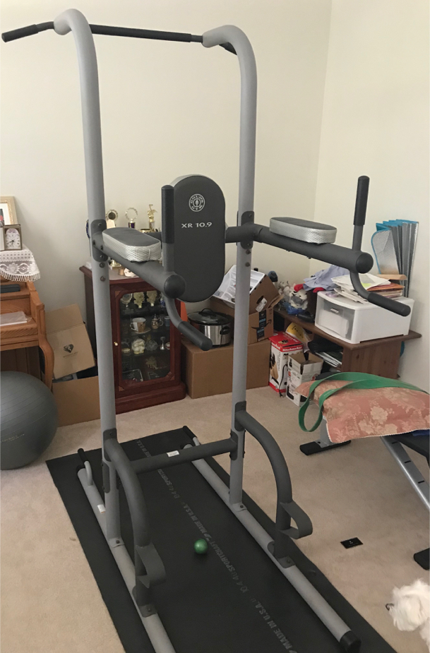 Photo Gold's Gym XR 10.9 Pull-up/dip tower