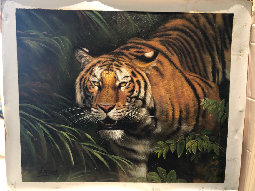 Photo Bengal tiger oil painting