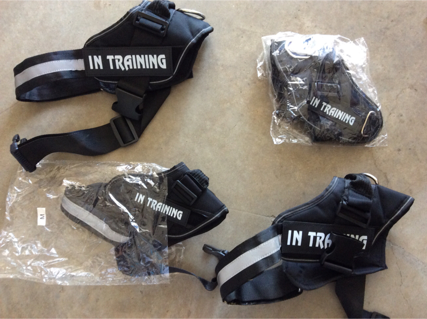Photo Four easy on dog harnesses