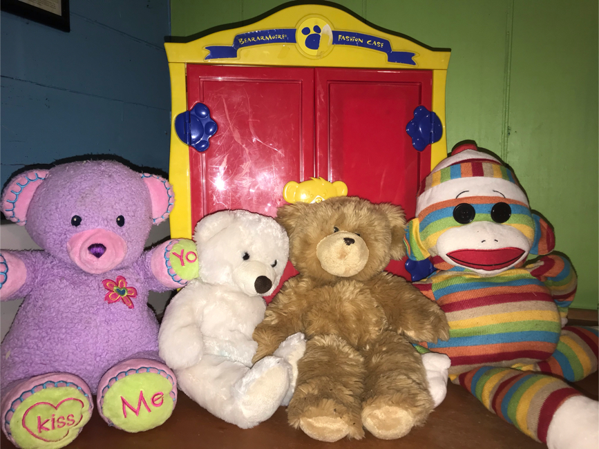 Photo Build a Bear Case and two Build a Bears and two misc stuffed dolls
