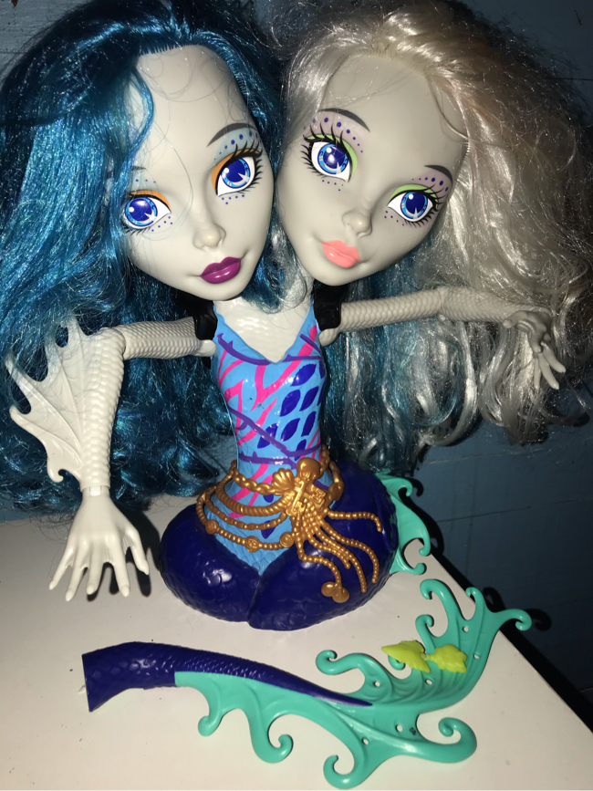 Photo Monster High double styling head
