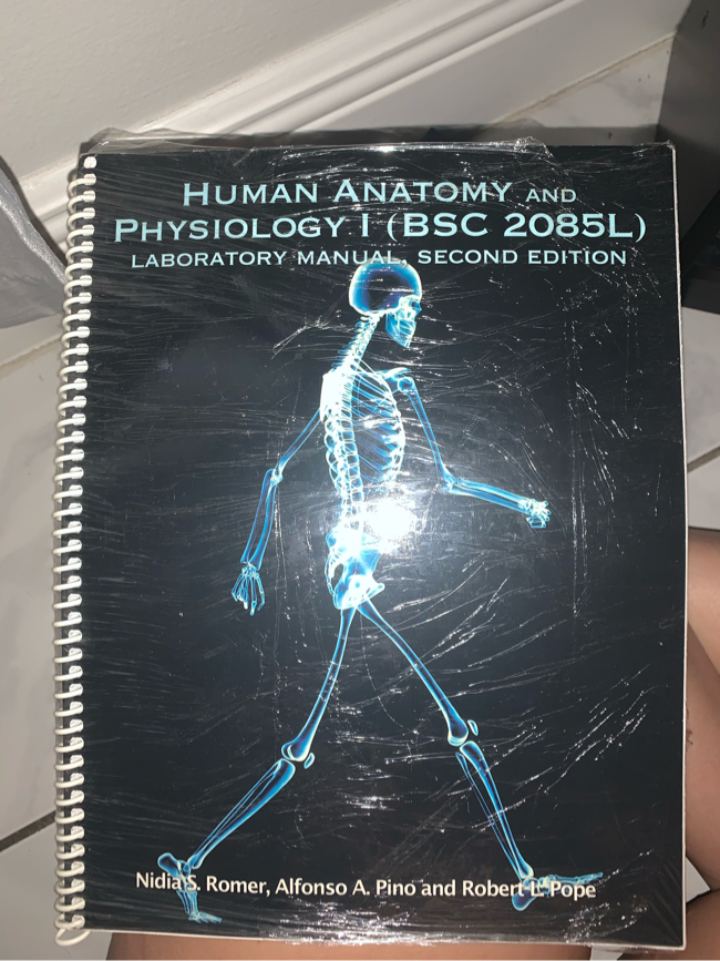 Photo Human Anatomy and physiology 1 (BSC 2085 L) - 2nd Edition